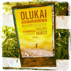 OluKai Ho'olaule'a stand up paddle race