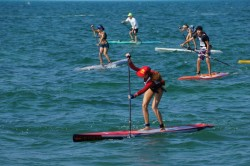 2013 Key West Classic (© Precision Paddleboards)