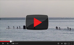 Stand Up Paddleboard race video