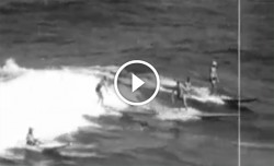 Black and white paddleboard race video