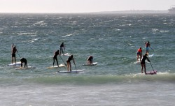 Downwind SUP Race