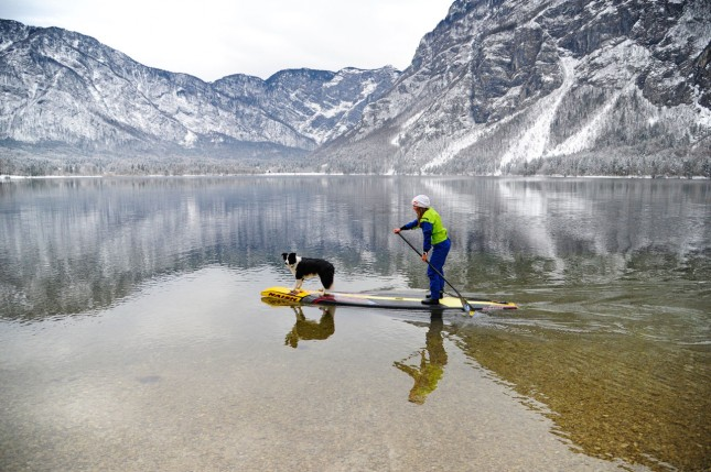 Stand Up Paddling with a dog