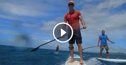 maliko downwind stand up paddling video