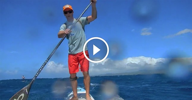 videos of stand up paddling in hawaii