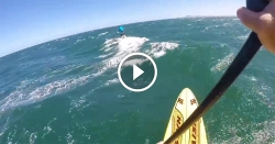 downwind stand up paddling video cape town 2016