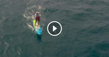stand up paddle video new zealand SUP