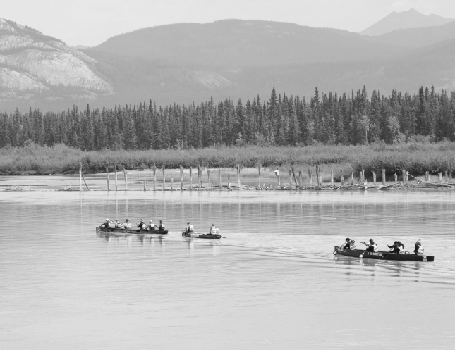 The Yukon River Quest: 715km of dehydration, hallucinations
